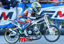 Dragbike, Fan Terra