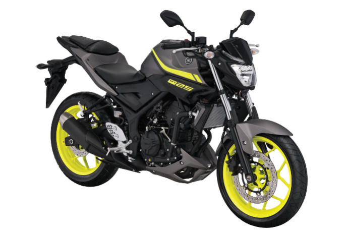 Yamaha MT-25 Matte Grey